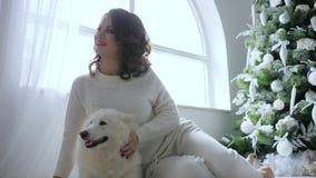 O Xmas, proprietário acaricia o cão perto da janela no fundo da árvore de Natal com os brinquedos brancos na sessão de foto vídeos de arquivo
