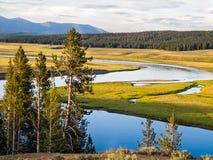 Vale do Heyden de Yellowstone Fotos de Stock Royalty Free