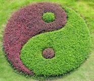 O yin e o yang Foto de Stock