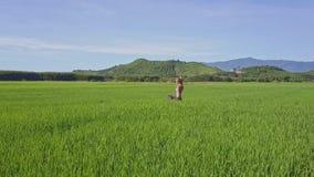 O zangão aproxima proximamente a menina na pose da ioga perto dos montes sob o céu vídeos de arquivo