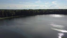 O zangão inclina acima do banco de um lago bonito em Bielorrússia, céu que reflete na água video estoque