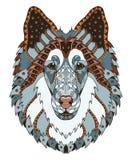 O zentangle áspero da cabeça de cão da collie estilizou, vector, ilustração, Imagens de Stock Royalty Free