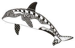 O zentangle da baleia de assassino estilizou, vector, ilustração, a mão livre ilustração stock