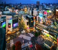 Oad, здание и скрещивание Shibuya от взгляда сверху на сумерках стоковая фотография