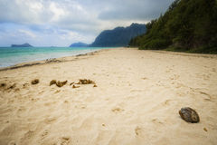Oahu Beach, Hawaii Stock Photography