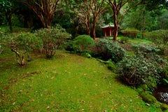 ναός της Χαβάης oahu byodo Στοκ φωτογραφία με δικαίωμα ελεύθερης χρήσης