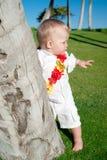 Oahu, Havaí Imagens de Stock Royalty Free