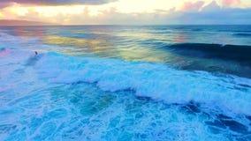 Oahu, Havaí, EUA video estoque