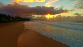 Oahu, Hawaï, de V.S. stock video
