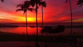 Oahu, Hawai, U.S.A. stock footage