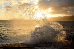 Oahu solnedgång Royaltyfri Bild