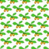 Oak acorn pattern Stock Image