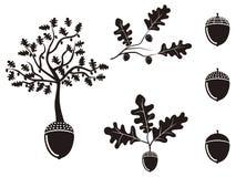Oak acorn silhouettes set Stock Image