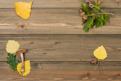 Oak Acorns, Autumn Leaves, Wild Mushroom. Wooden Stock Photos