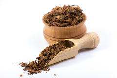 Oak Bark Herb. In an olive wood scoop over white background. Used in alternative herbal medicine Stock Photos