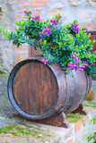 Oak barrel and flowers. Oak barrel decorated with the flowers at the street in Tuscany royalty free stock images