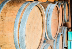 Oak barrels Royalty Free Stock Photo