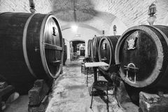 Oak barrels in an old wine cellar. Stock Photography