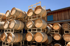 Oak Barrels, Roblar Winery and Vineyard Stock Images