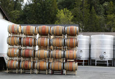 Oak barrels and stainless steel fermentation tanks at the vineyard Royalty Free Stock Photo