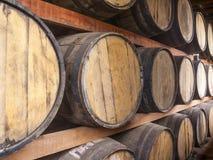 Oak barrels storage Royalty Free Stock Image