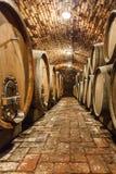 Oak barrels in a underground wine cellar Royalty Free Stock Photo
