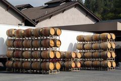 Oak barrels at the vineyard Stock Photography