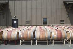 Oak barrels at the vineyard Stock Image