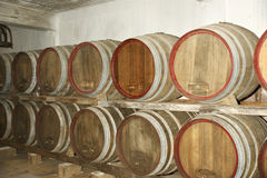 Oak barrels in which the wine matures at a winery Stock Photos