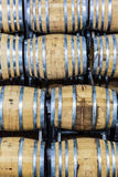 Oak barrels wine Stock Photos