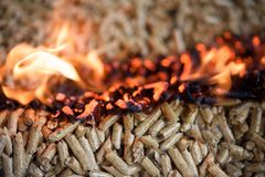 Oak biomass in flaming pellets. Burning pellets - aok wooden biomass in flame royalty free stock photography
