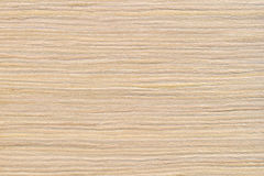 Oak bleached premium Stock Image