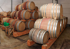 Oak casks with pinot noir (PN) wine Royalty Free Stock Photography