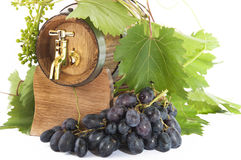 In oak casks with vines and grapes white and black Stock Images