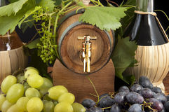 In oak casks with vines and grapes white and black Royalty Free Stock Photos