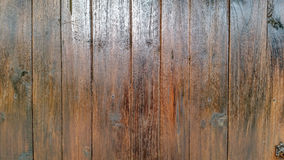 Oak color wood wall Stock Photo
