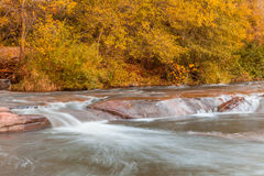 Oak Creek in Autumn Royalty Free Stock Images