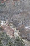 Oak Creek Canyon Snow Stock Photo