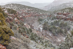 Oak Creek Canyon Winter Snow Royalty Free Stock Images