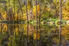 Oak Creek in Fall Reflection Stock Photo