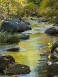 Oak Creek, Sedona, Arizona nella caduta immagini stock