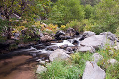 Oak Creek. Water flowing through Oak Creek near Sedona, Arizona Royalty Free Stock Image