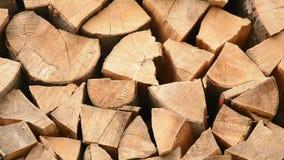 Oak firewood, close up - vertical panning. stock footage