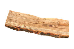 Oak firewood piece Stock Image