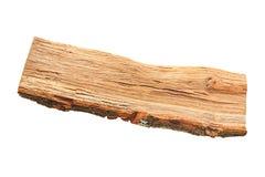 Oak firewood piece Stock Image