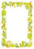 Oak frame background - vector illustration Royalty Free Stock Images