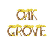 Oak grove Stock Image