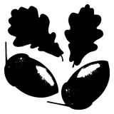 Oak leaf, acorn and branch isolated silhouette, ecology stylized Stock Image
