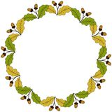Oak leaf and acorn in color, liner, round frame 1 Stock Photography