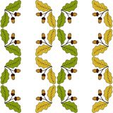 Oak leaf and acorn in color, liner, seamless 2 Royalty Free Stock Photos